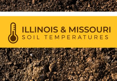 Soil Temperatures