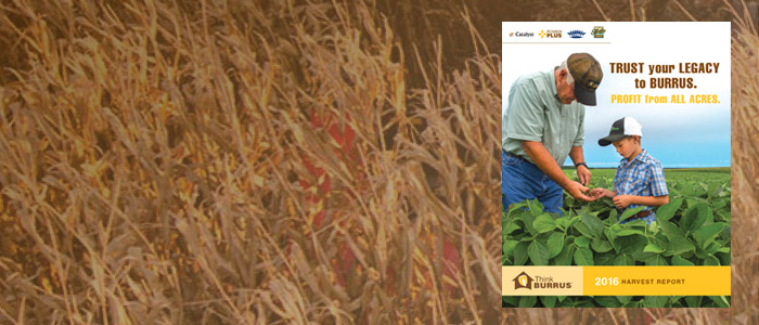 Burrus 2016 Harvest Report