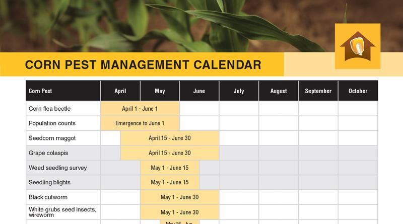 Corn Pest Management Calendar Chart