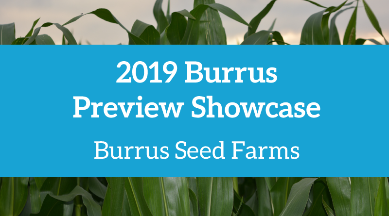 Burrus Products – Burrus Seed
