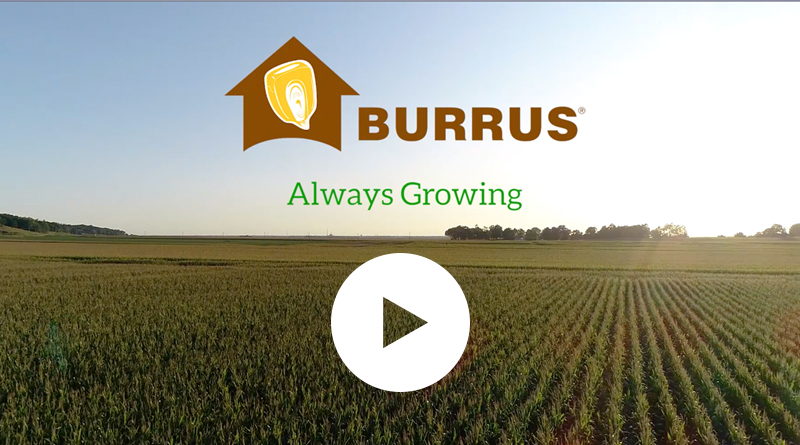 Burrus Field Day Video 2019