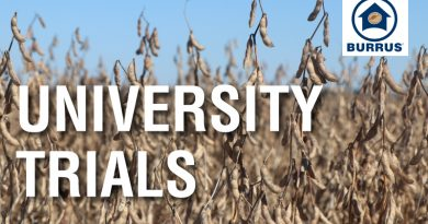 University of IL Soybean Trials