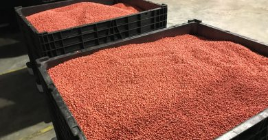 Seed selection – AgriBusiness Today
