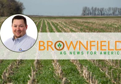 Spring Management of Cover Crops